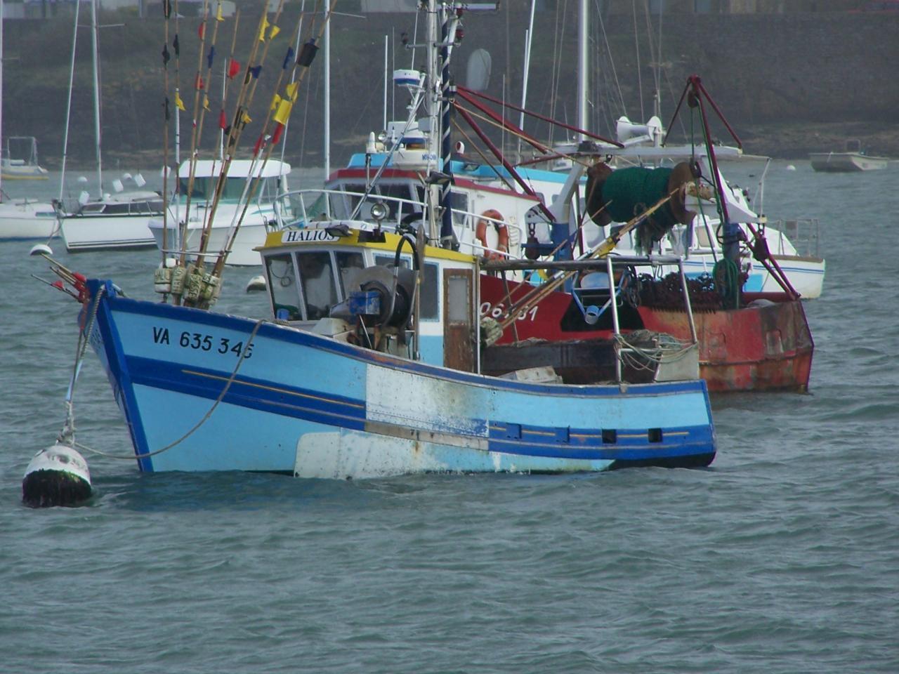 Bateaux de pêche Port-Navalo